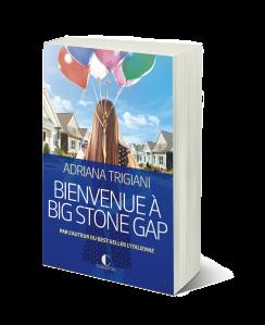 Bienvenue-à-big-stone-gap+3D