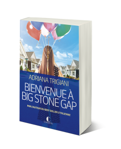 Bienvenue-à-big-stone-gap+3D